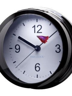 Aquavista Betta Fish Clock Aquarium 1
