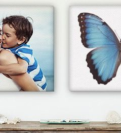 Get 25 percent off all Canvas Prints and Free Shipping!