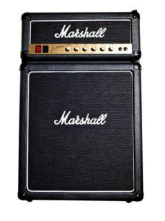Marshall Fridge 1