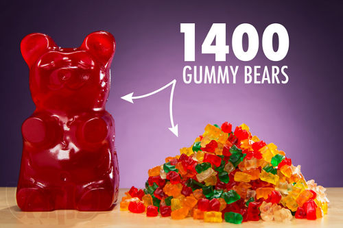 The World's Largest Gummy Bear 1