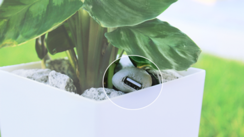 The first plant pot that charges your phone