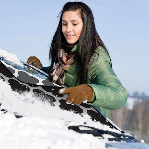Winter Protective Windshield Cover 1