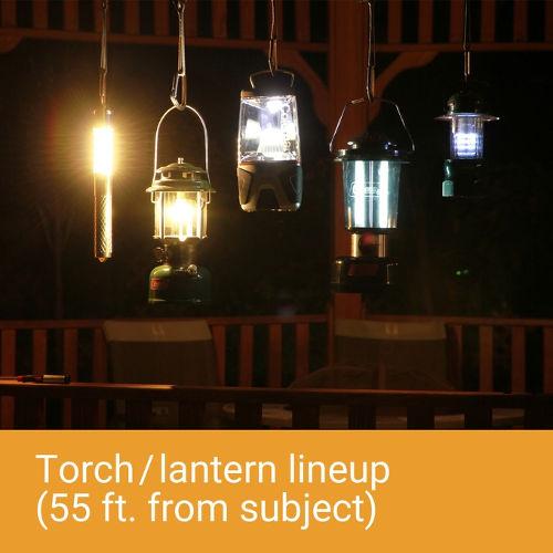 Zyntony Torch 3