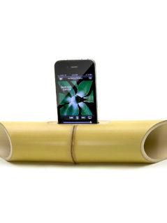 iBamboo Speaker 1